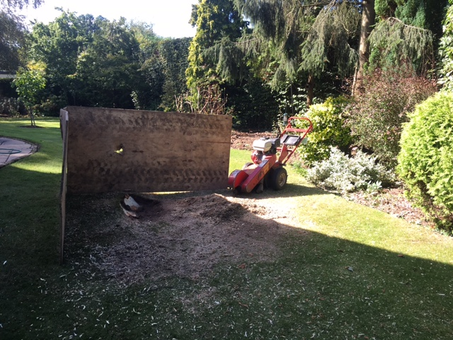 We also can provide a stump grinding service.