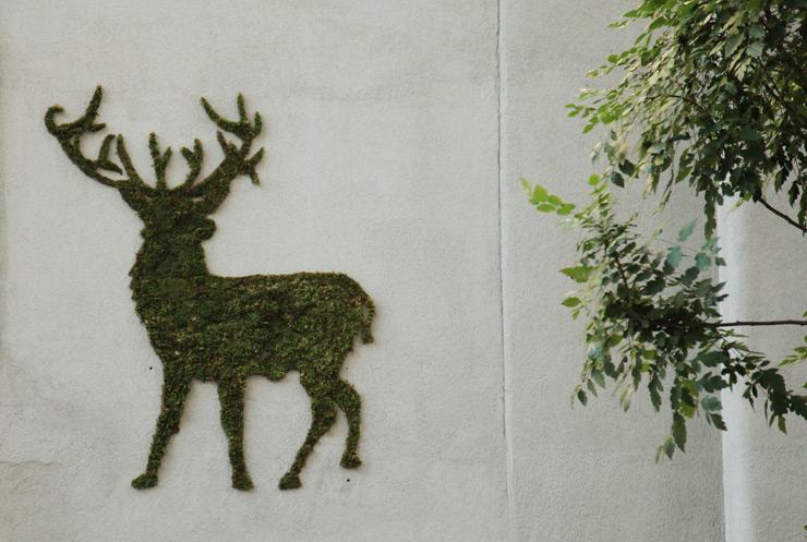 moss-graffiti-4.jpg