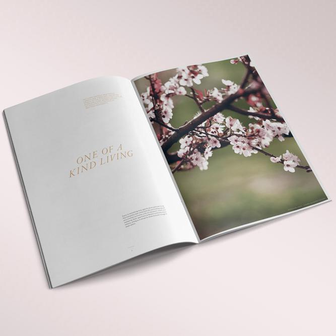 botanic-brochure-11.jpg