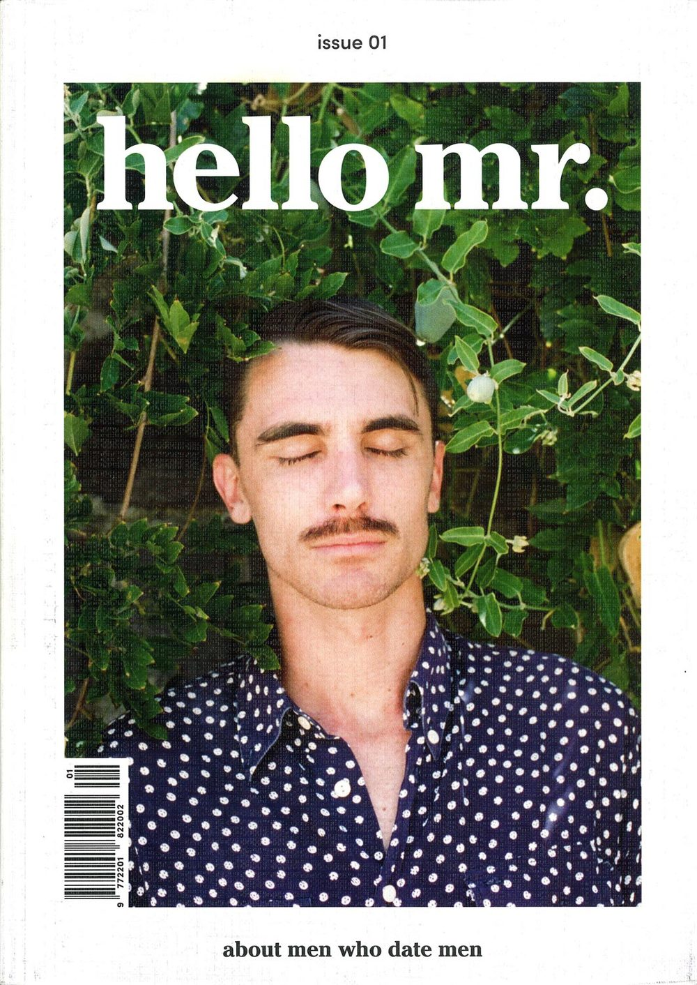 hello-mr-cover.jpg