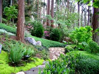Hillsides on mountain patio ideas