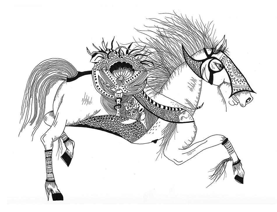 Equus ferus.jpg