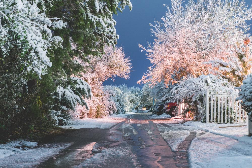 TX_Winter-9393.jpg