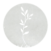 AW icon Small.png