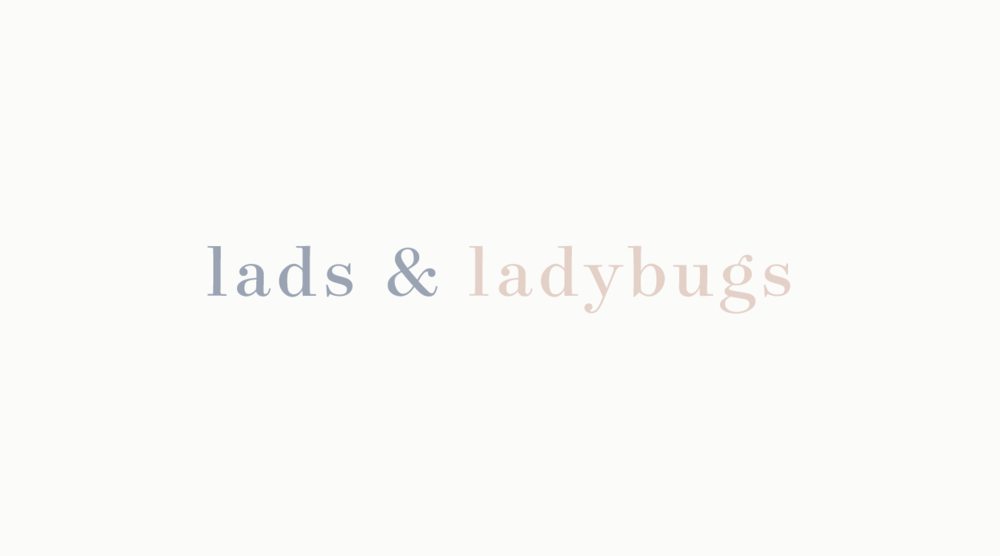 Lads & Ladybugs    - brand & web -