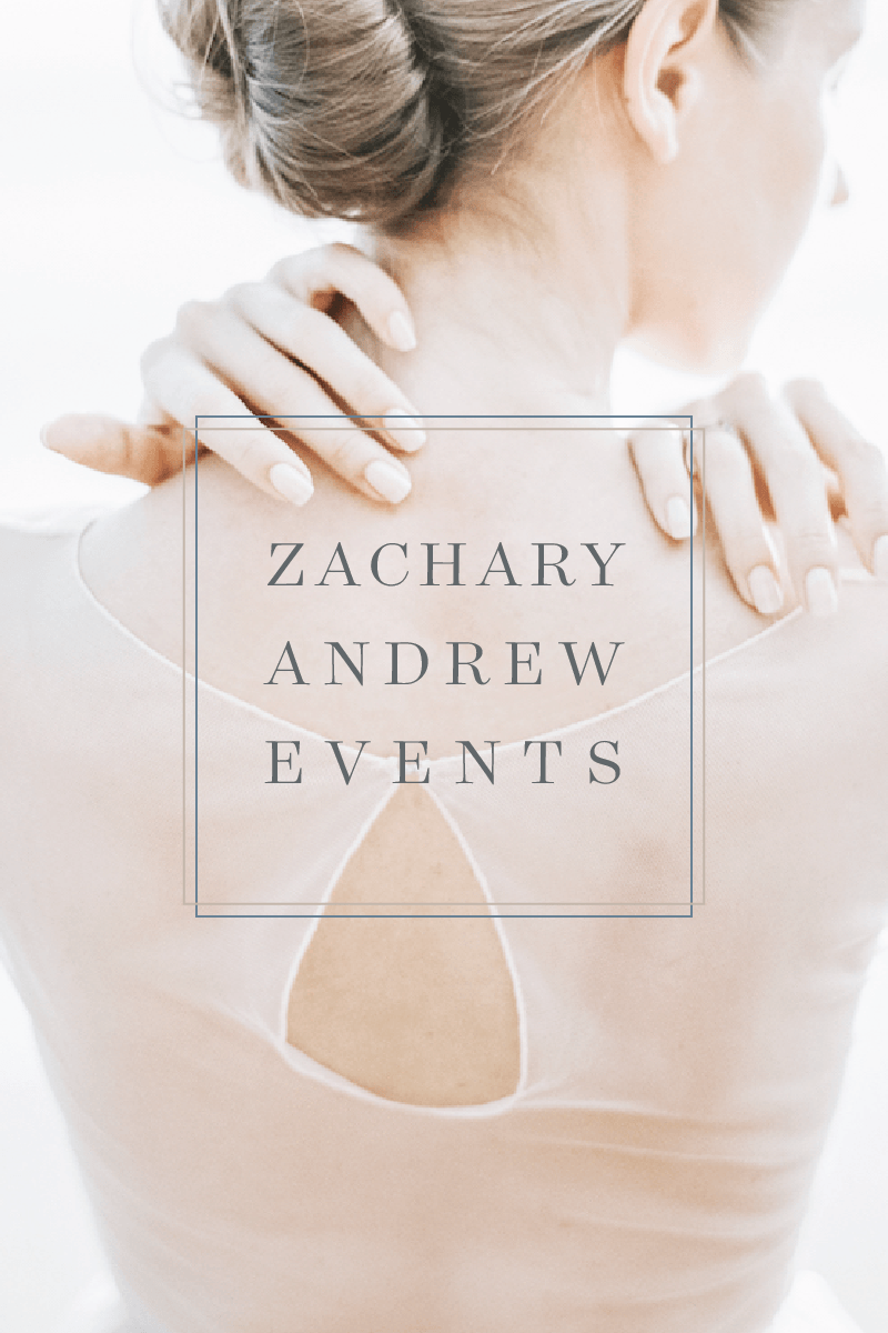 Zachary Andrews    - brand & web -