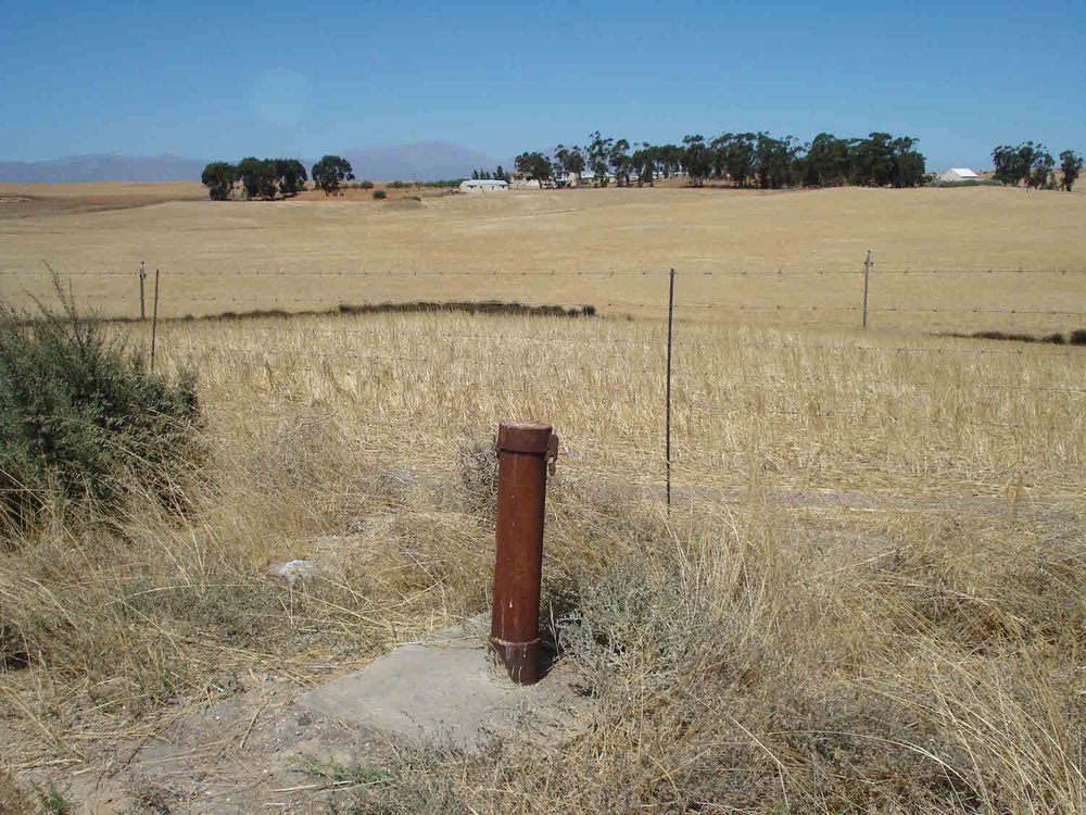Groundwater monitoring well near Picketburg.