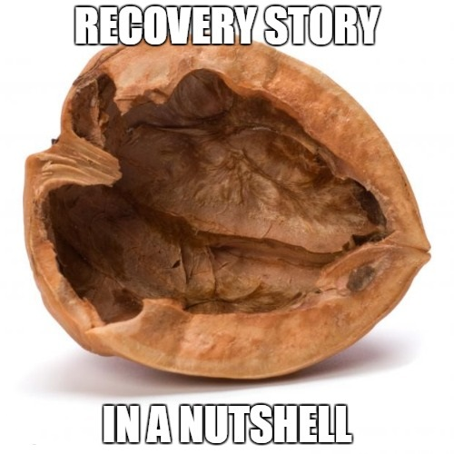 Recovery story in a nutshell