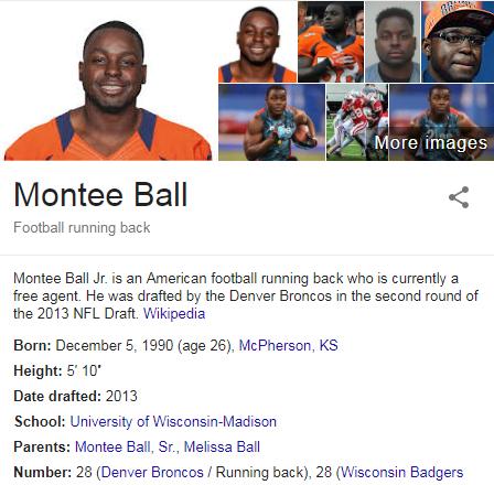 Montee Wiki