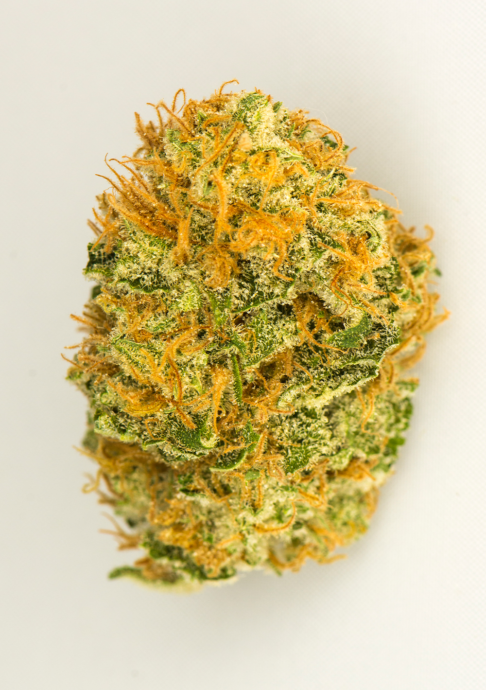 <a>ORANGE KUSH</a><strong>INDICA</strong>