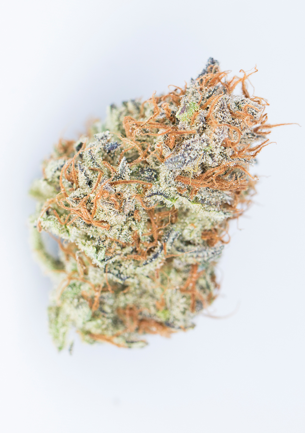 <a>GRAPEFRUIT</a><strong>SATIVA DOMINANT HYBRID</strong>