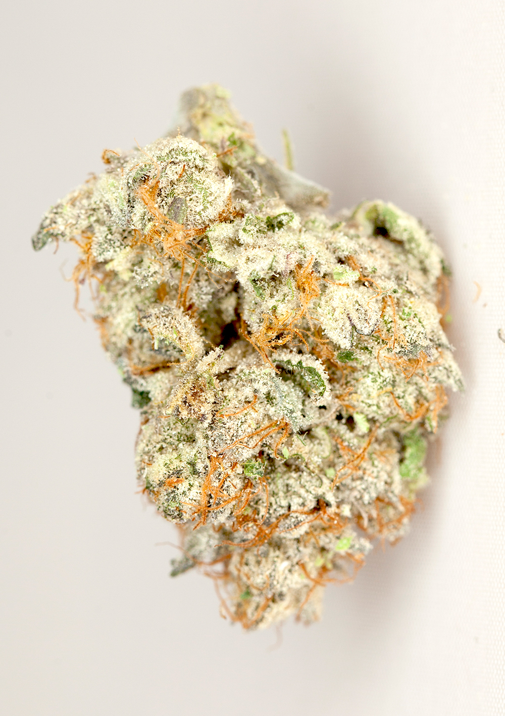<a>SHERBET</a><strong>INDICA DOMINANT HYBRID</strong>