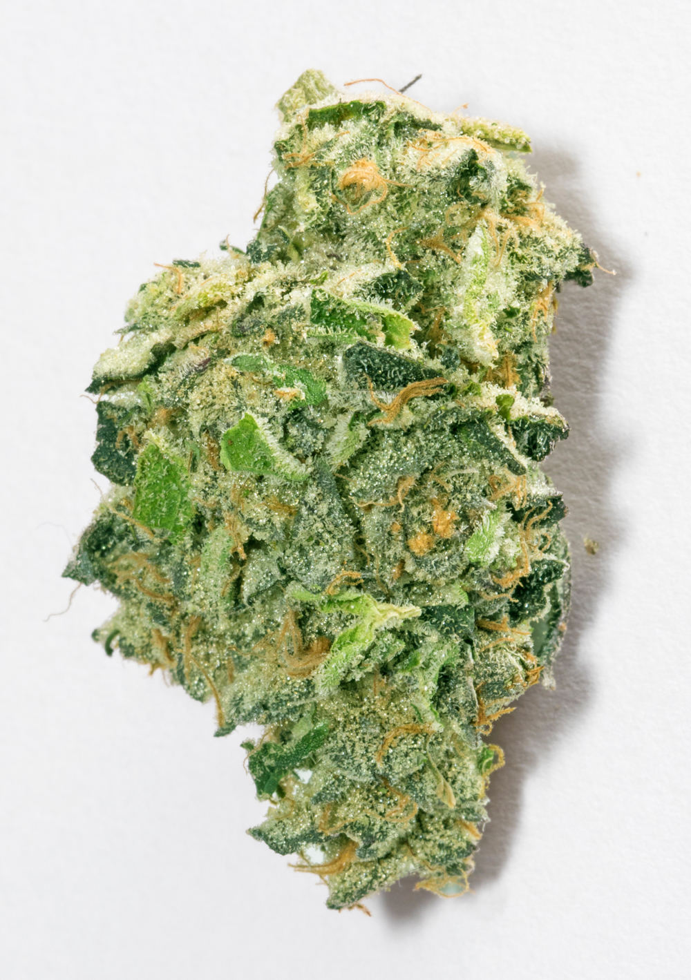 <a>STRAWBERRY COUGH</a><strong>SATIVA</strong>