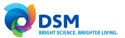 dsm_logo.jpg