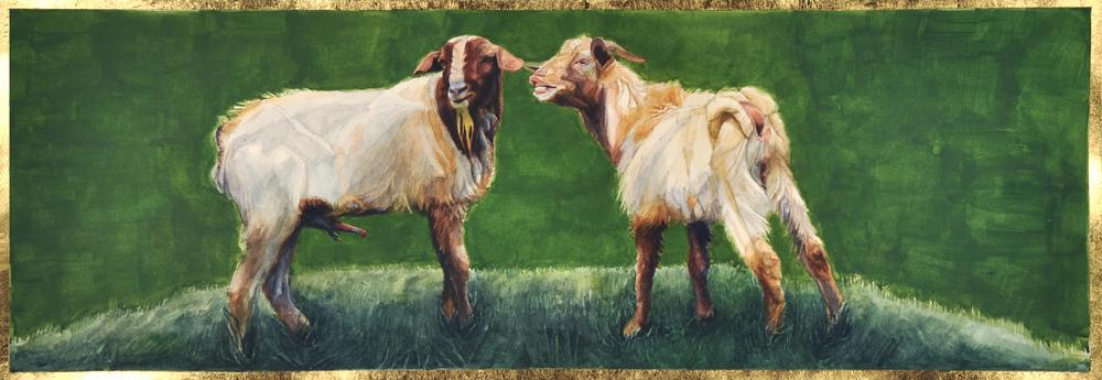 Sexy Goats