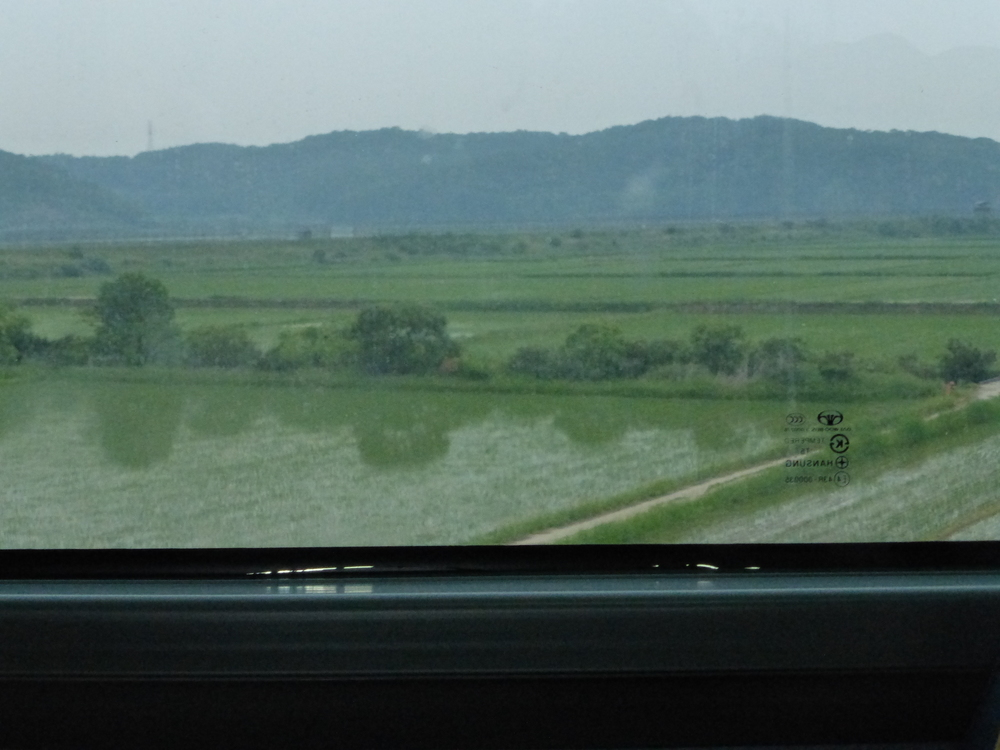 Looking out the window at miles of rice fields.  They are completely submerged under water.  The people in that work these fields were offered no taxes or military service to move close to the border between North and South Korea because after the Korean War it became a ghost town and South Korea wanted to bring people back to it.