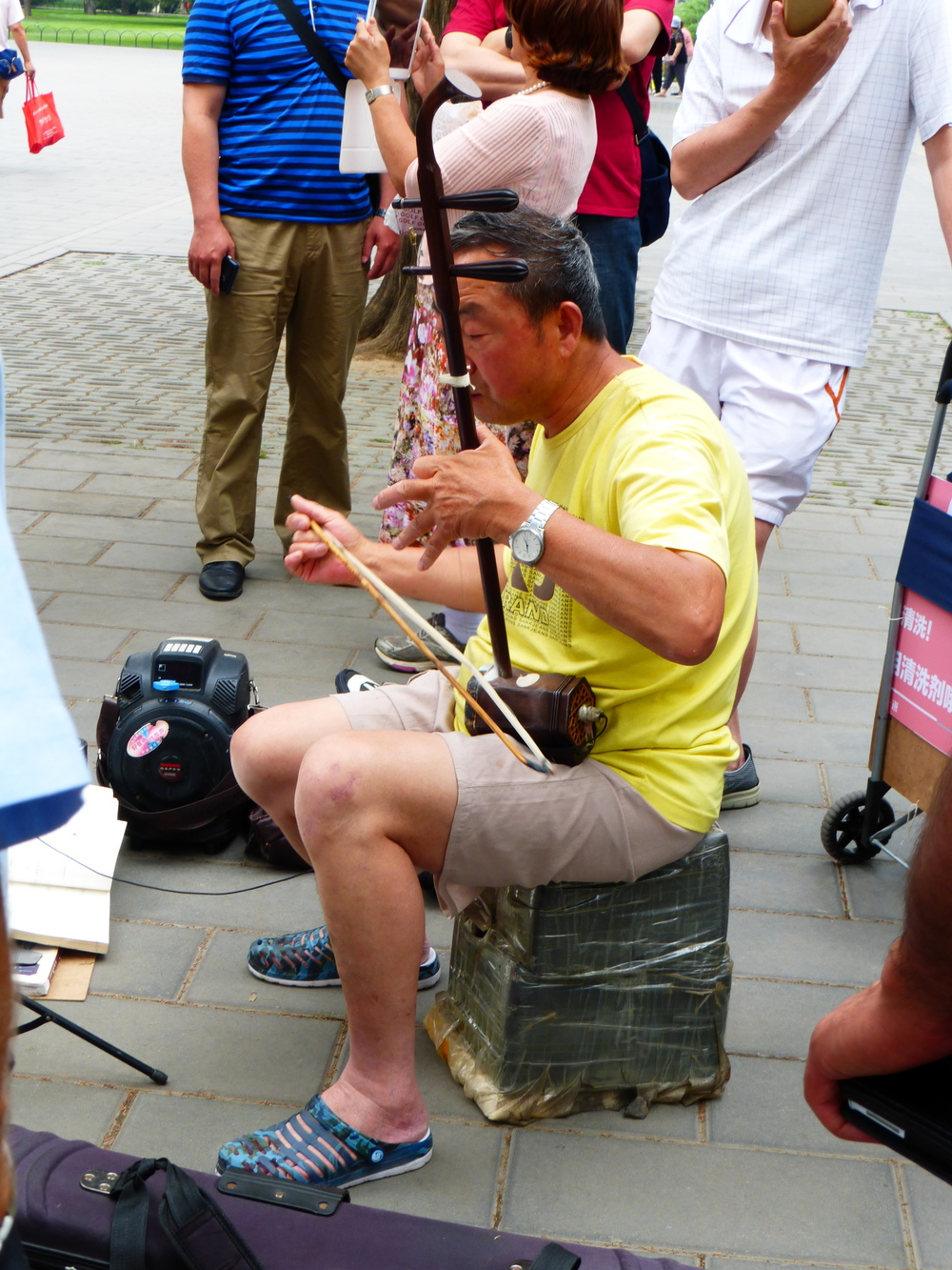 Man playing a Chinese instrument in the park around the Temple of Heaven.