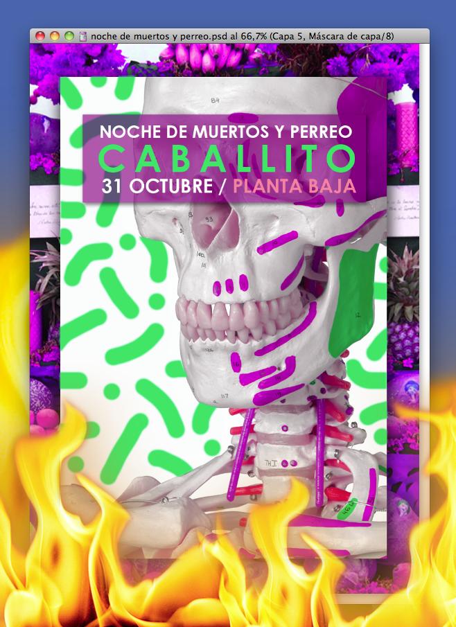flyer_planta_dia de los muertos.png