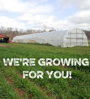we are growing for you text with hoophouse.jpg