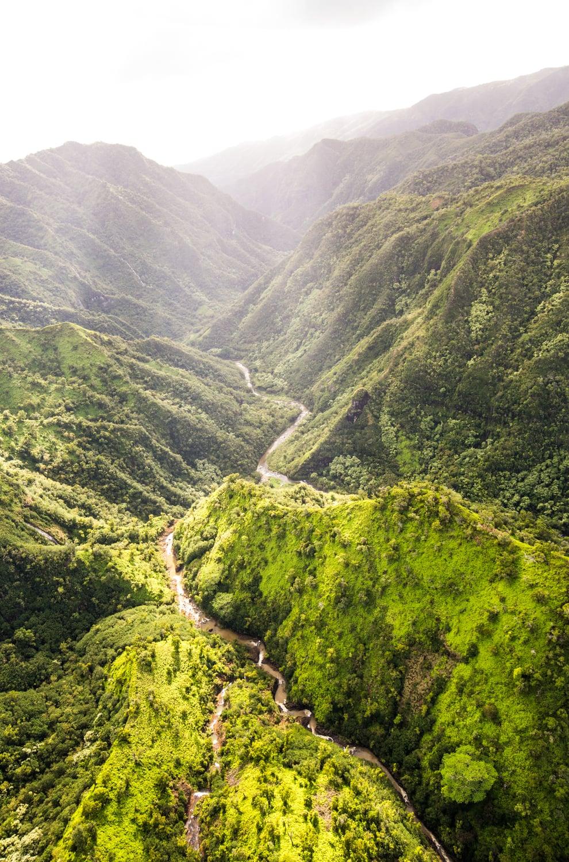 Hawaii_12_20_15-17.jpg