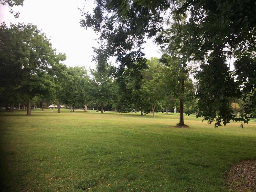 The park ...