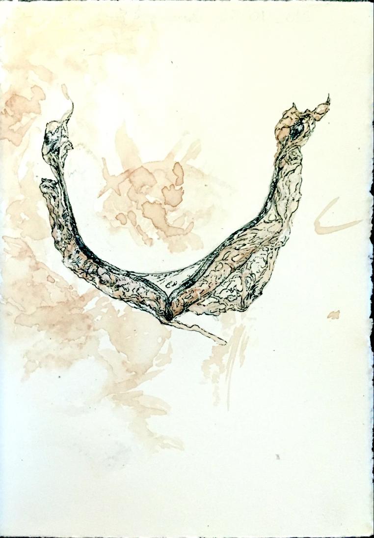 pg-2.jpg