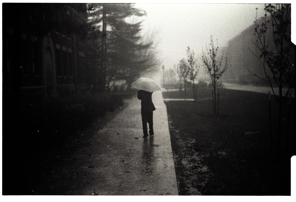 Good weather.  Ilford HP5+ iso400 push 1 stop.