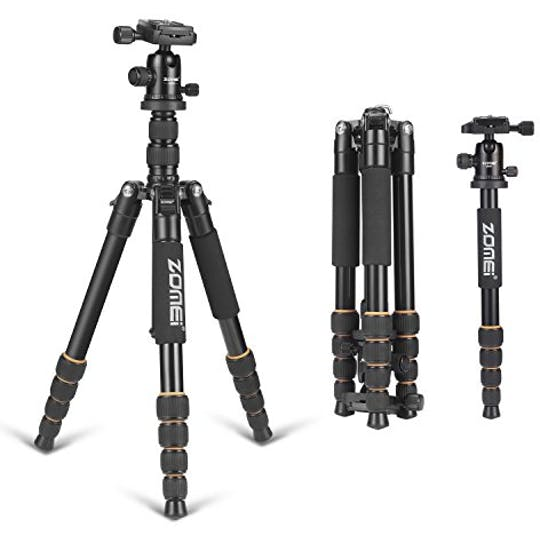 What Tripod Should I Buy?