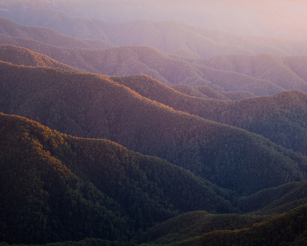 Point Lookout offers views over World-Heritage rainforest, across mountain ranges and through steep gullies.
