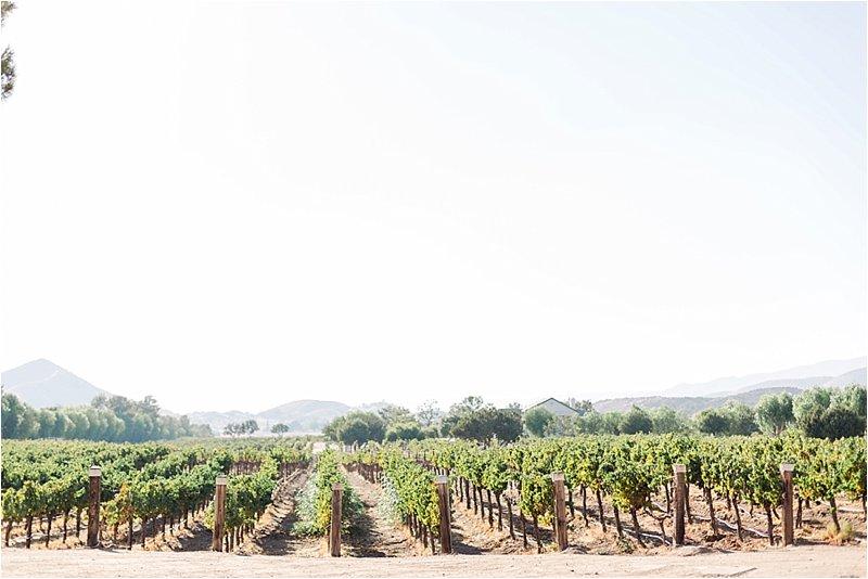 Agua Dulce Winery - Engagement Photos - Tiffany J Photography_0009.jpg