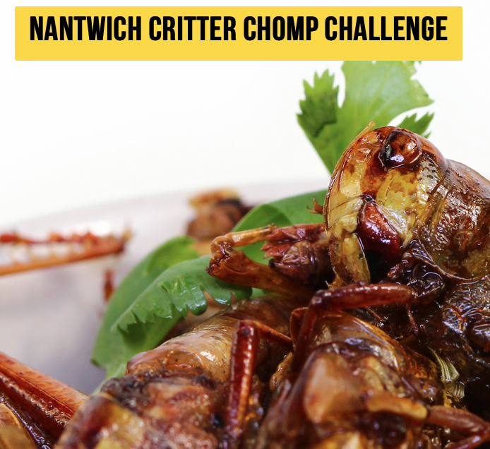 Nantwich Food Festival critter Chomp Challenge