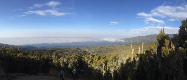 Chillimanjaro on Kilimanjaro