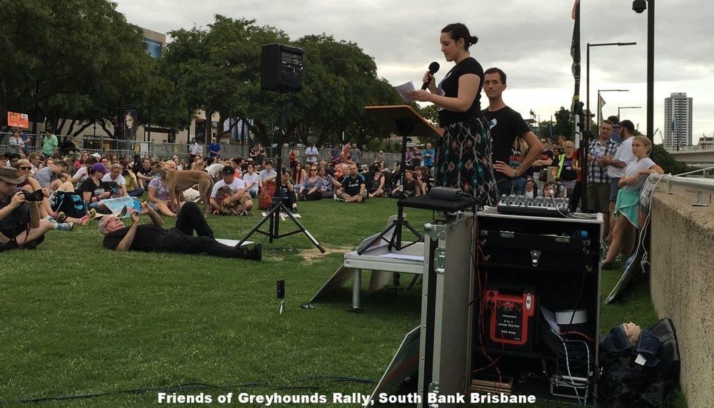 Animals Australia rally at Southbank, Brisbane