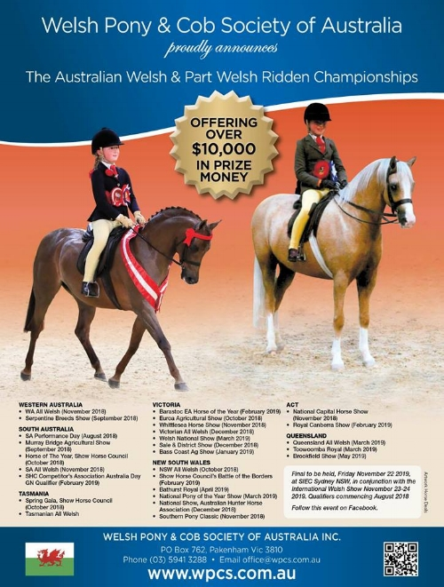 Welsh Pony Cob Soc of Aust.jpg