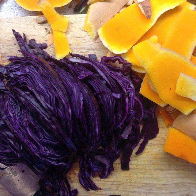 Sauerkraut in the making #sdc #gaps #fermentation #guthealth