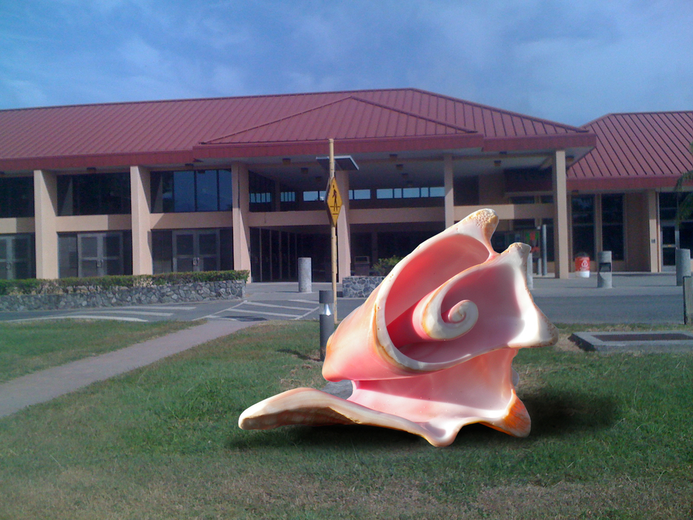 conch_with_building.jpg