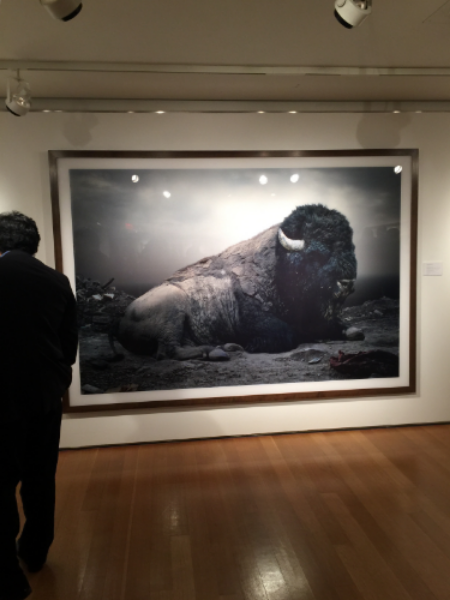 Christies's Photography Auction | Simen Johan | Until the Kingdom Comes
