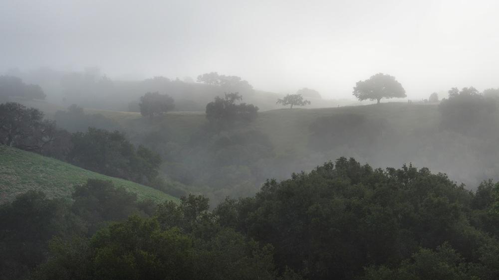View from Lavender Hill, Santa Barbara, California