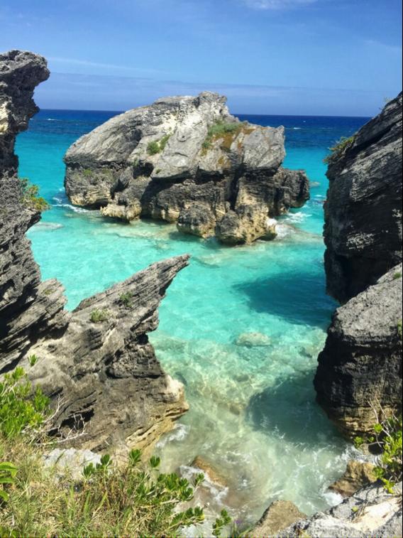 Bermuda's Cliffs