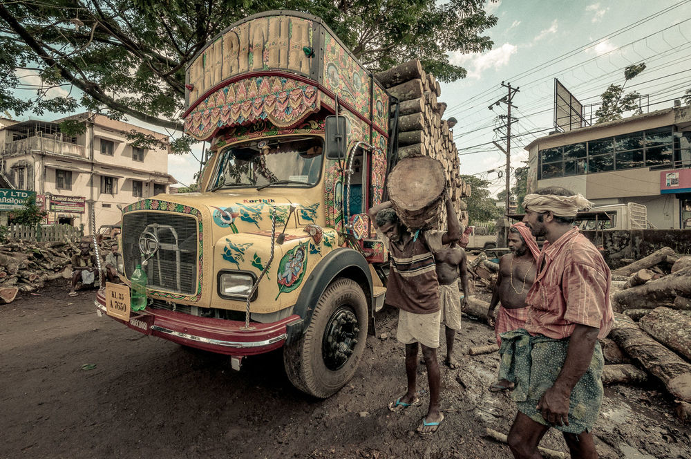 Wood loggers, South India