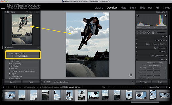 The great thing about Lightroom presets is that you can preview them in the Navigator Panel. So you only click and apply them when the preview looks nice.