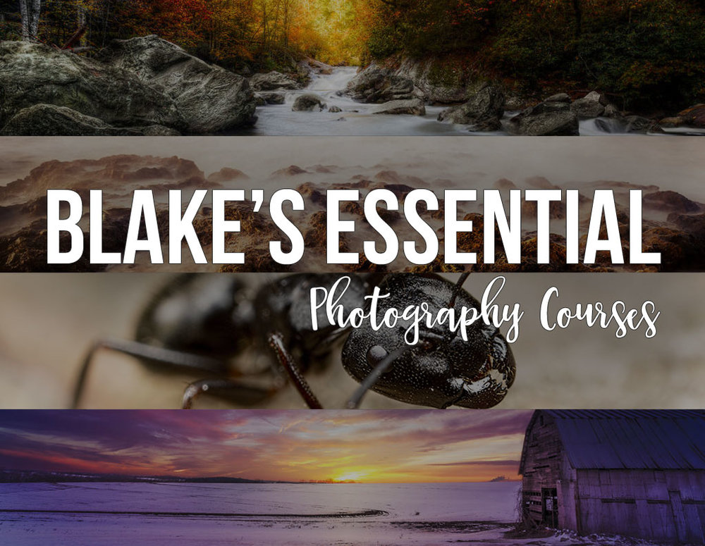 blake-essential-photography-courses.jpg