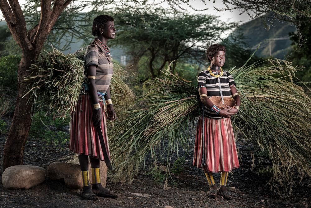 Ethiopia-Starling-PietVandenEynde_018.jpg