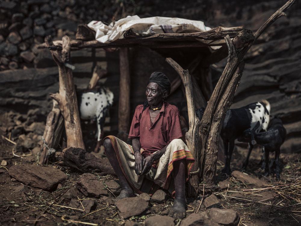 Ethiopia-Starling-PietVandenEynde_006.jpg