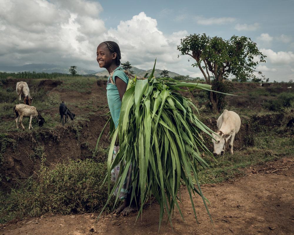 Ethiopia-Starling-PietVandenEynde_001.jpg