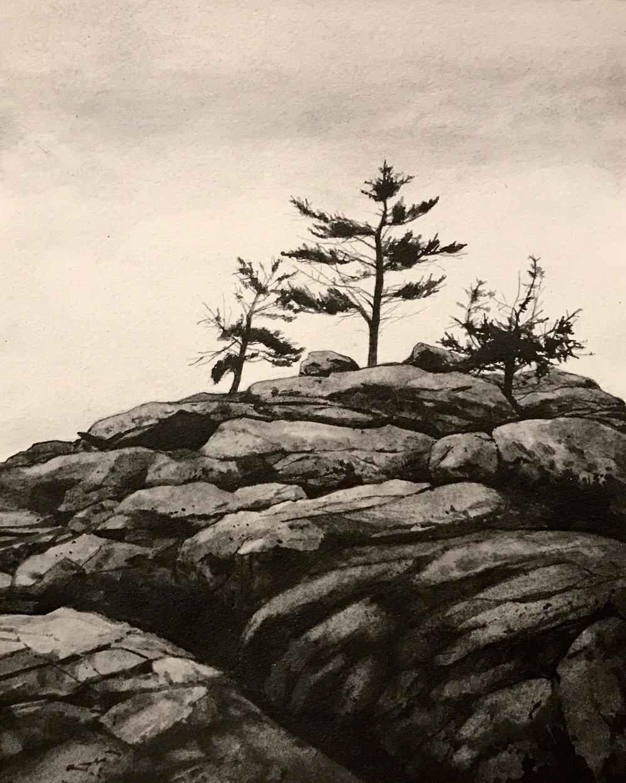 "Maine Coast ll  Liquid graphite on paper  19"" x 17"" framed"