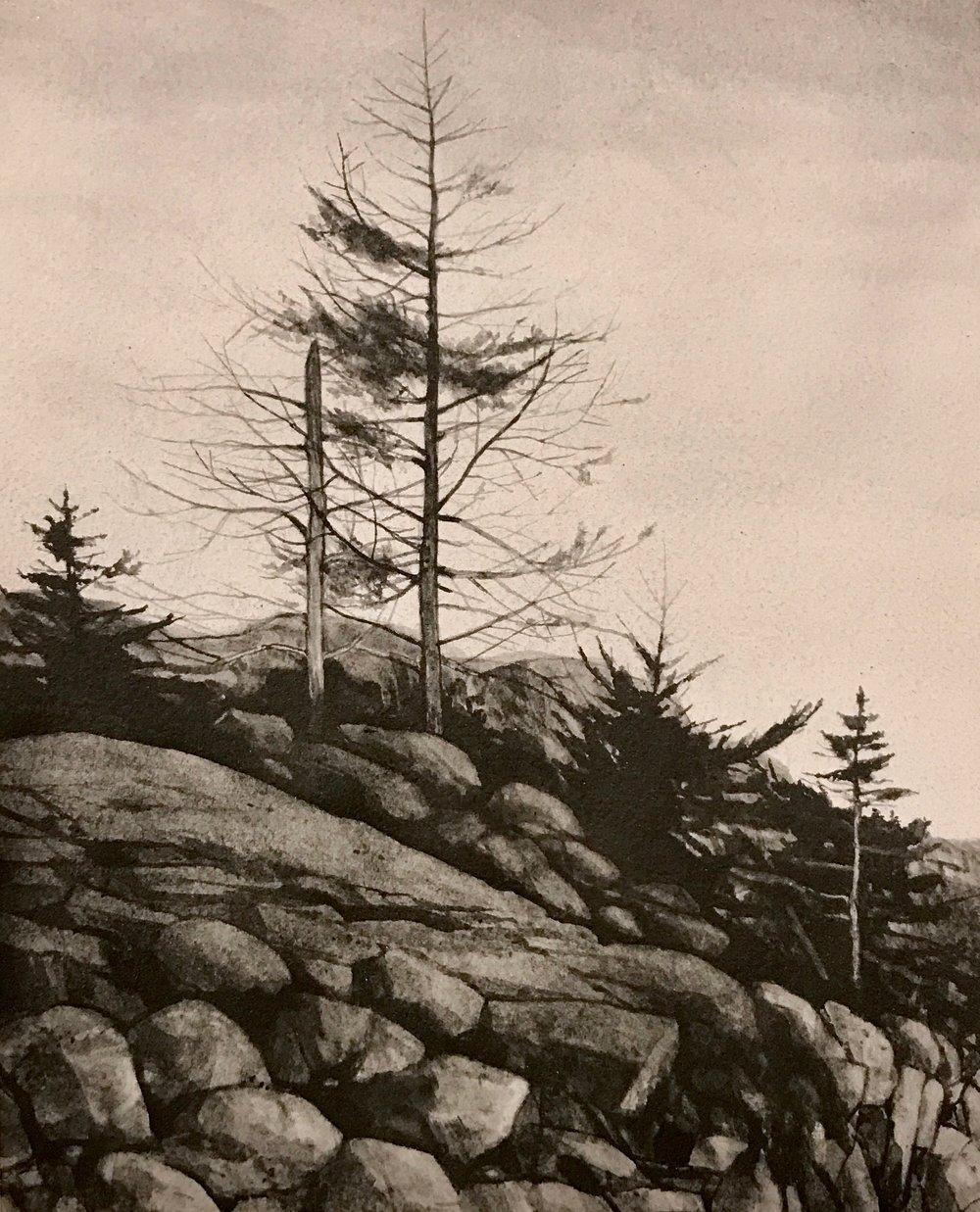 "Maine Coast lll  Liquid graphite on paper  19"" x 17"" framed"