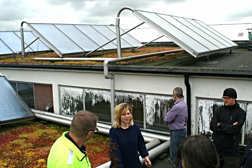 Green Roof Maintenance. Klara Asp, Scandinavian Green Roof Institute.