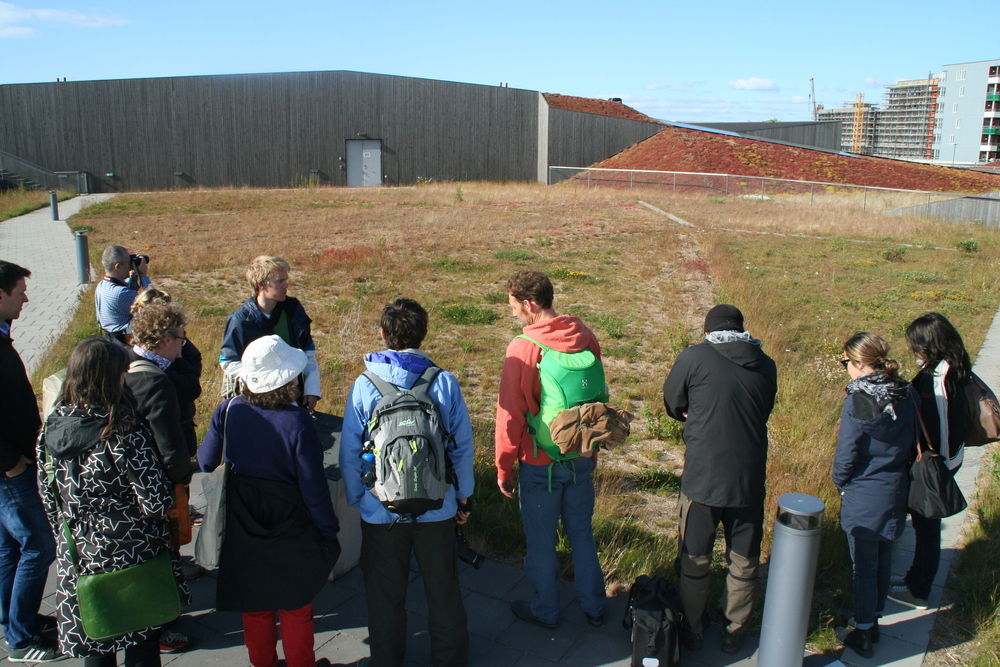 Increasing biodiversity on Green Roofs. Jonatan Malmberg, Scandinavian Green Roof Institute.