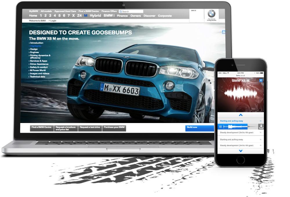 Copy of BMW X6 M